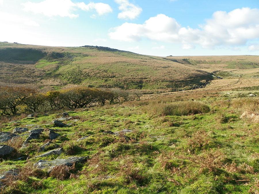 Dartmoor walks